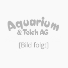 Giesemann PowerChrome 54 Watt AquaBlue +
